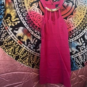 Windsor Vintage Fuchsia/pink Dress